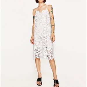 Zara Women Lace Strappy Dress